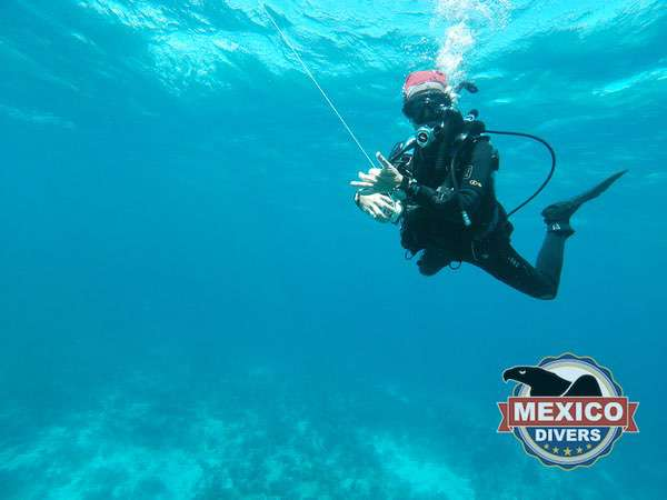 divemaster holding line